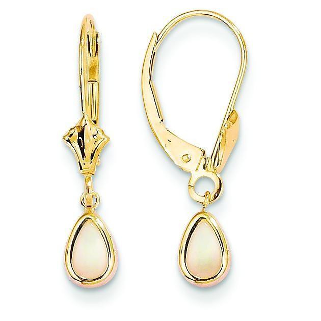 Opal Earrings Goober in 14k Yellow Gold
