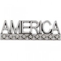 America Lapel Pin in 14k White Gold