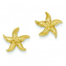Starfish Earrings in 14k Yellow Gold