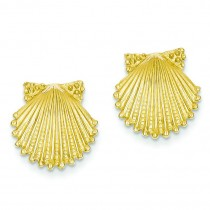 Shell Earrings in 14k Yellow Gold