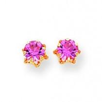 Pink Tourmaline Earrings in 14k Yellow Gold