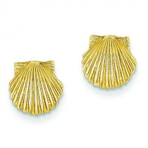 Scallop Shell Post Earrings in 14k Yellow Gold