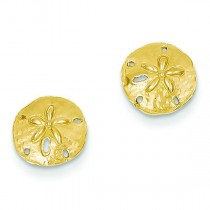 Sand dollar Post Earrings in 14k Yellow Gold