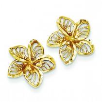 Diamond Cut Filigree Plumeria Earrings in 14k Yellow Gold