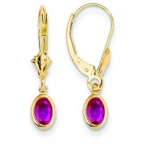 Ruby Leverback Earrings in 14k Yellow Gold