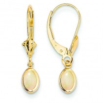 Opal Leverback Earrings in 14k Yellow Gold
