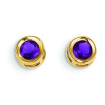 February Amethyst Post Earrings in 14k Yellow Gold