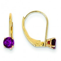 Rhodolite Leverback Earrings in 14k Yellow Gold
