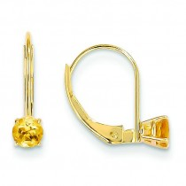 Citrine Leverback Earrings in 14k Yellow Gold