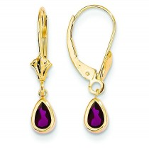 Rhodolite Earrings June in 14k Yellow Gold