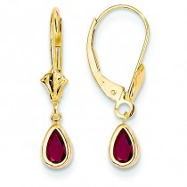 Ruby Earrings in 14k Yellow Gold
