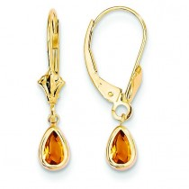 Citrine Earrings November in 14k Yellow Gold
