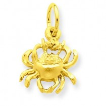 Cancer Zodiac Charm in 14k Yellow Gold