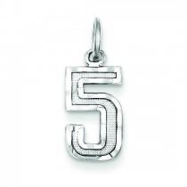 Small Diamond Cut Charm in Sterling Silver