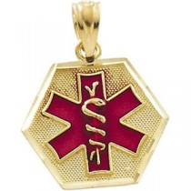 Medical ID Pendant in 14k Yellow Gold