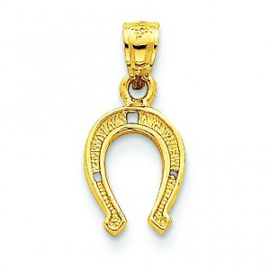 Horse Shoe Pendant in 14k Yellow Gold