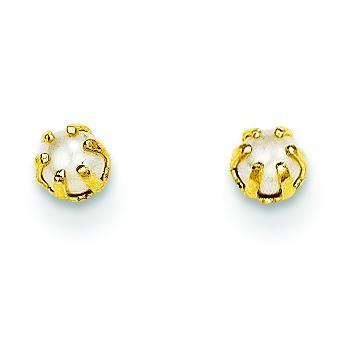 Cultured Pearl Earrings in 14k Yellow Gold